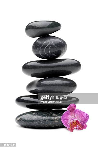 Stones with Orchid