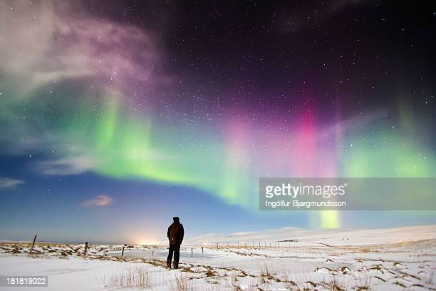 stop and stare - aurora borealis stock pictures, royalty-free photos & images