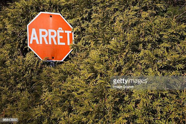 Stop sign in hedge
