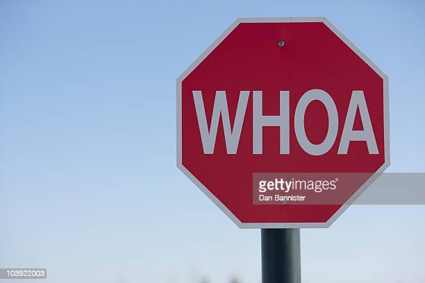 stop sign with the word whoa on it - stop sign stock pictures, royalty-free photos & images