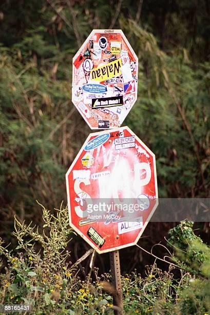 stop signs covered in graffiti and stickers, kauai, hawaii - vandalismus stock-fotos und bilder