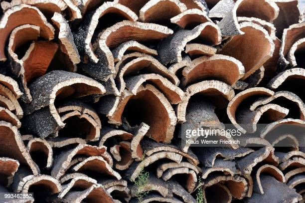 storage of cork bark of cork oaks (quercus suber), portugal - cork tree stock photos and pictures
