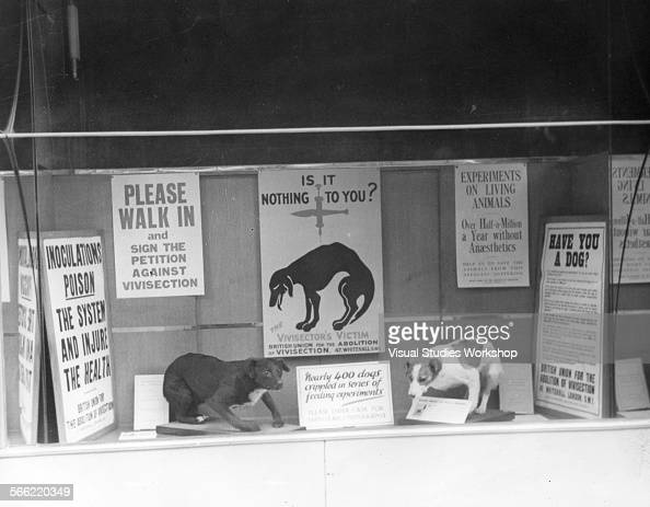 against vivisection