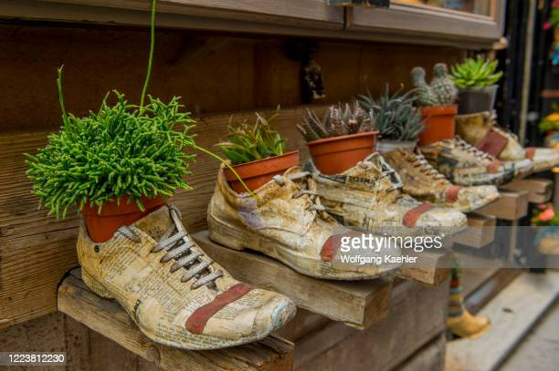 Store is selling old sneakers turned into flower pots in the medieval and Renaissance hill town of Montepulciano in Tuscany, Italy.