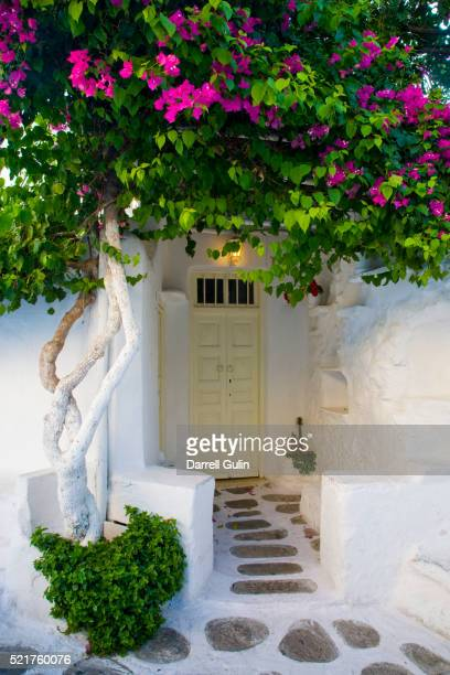 Storefront with Colorful Bougainvillea