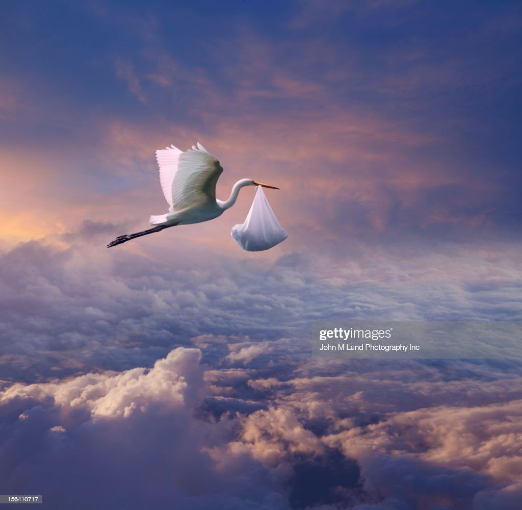 Stork carrying bundle over the clouds : Stock Photo