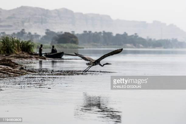A stork flies over the water of the Nile river near fishermen in a boat by the village of Gabal alTayr north of Egypt's southern city of Minya on...