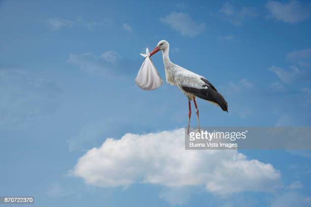 Stork on a cloud with baby in bundle
