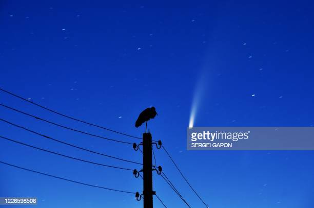 Stork stands on a power lines pillar as the comet C/2020 F3 is seen in the sky above the village of Kreva, some 100 km northwest of Minsk, early on...