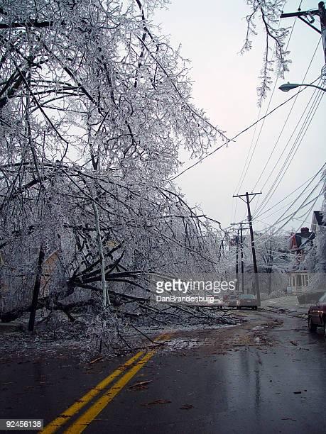 Storm Blocks Road