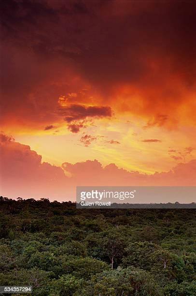 storm clouds gathering over amazon basin - manaus - fotografias e filmes do acervo