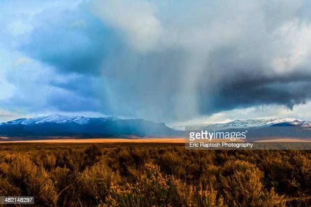 storm clouds moving across rural prairie, orovada, nevada, united states - nevada stock-fotos und bilder