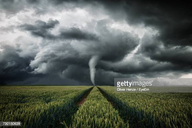 Storm Clouds Over Agricultural Field