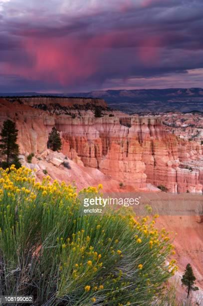 Wolken über Desert Canyon