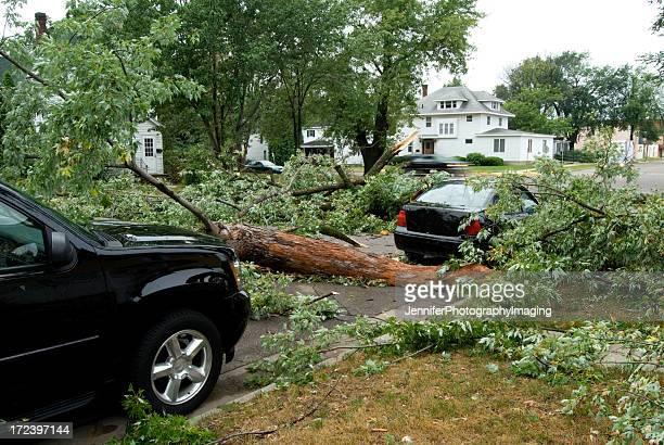 Storm Schäden