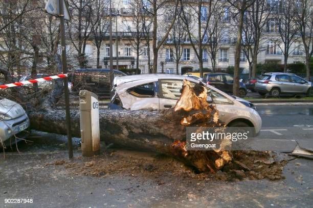storm in paris - green car crash stock pictures, royalty-free photos & images
