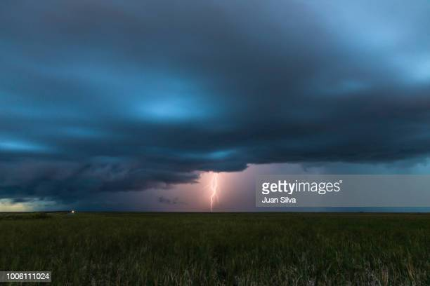 storm in the horizon, everglades national park, florida, usa - gulf coast states stockfoto's en -beelden