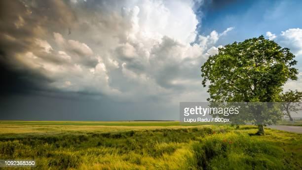 storm or not - {{asset.href}} stock-fotos und bilder