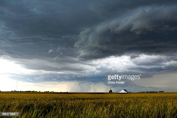 a storm over a golden wheat field threatens a farm and barn south of tonkawa, oklahoma - oklahoma - fotografias e filmes do acervo