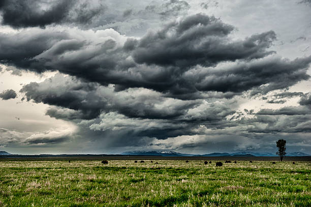 Storm Over Jackson Hole Valley Wall Art