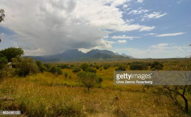 storm over mount kadam. - treetop stock pictures, royalty-free photos & images