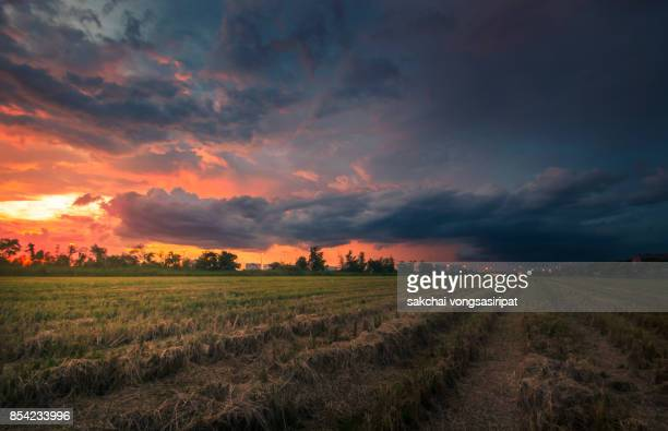 storm over the farm against dramatic sky during sunset - moody sky stock pictures, royalty-free photos & images