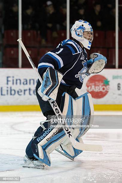 Storm Phaneuf of the Chicoutimi Sagueneens guards his net against the Gatineau Olympiques during a game on February 20, 2015 at Robert Guertin Arena...
