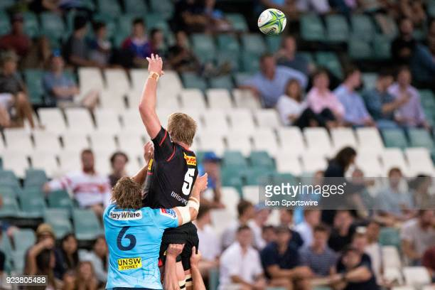 Stormers player PieterSteph du Toit and Waratahs player Ned Hanigan go up for the ball at round 2 of the Super Rugby between The Waratahs and...