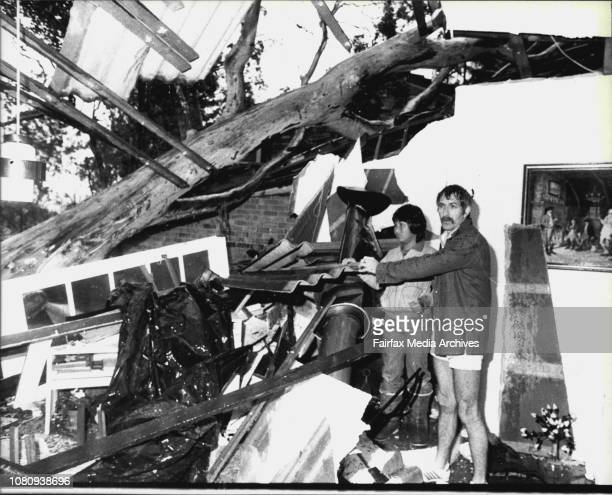 StormMr Dennis Wilson and his son Franciscus remove some of the debris sent crashing into their loungeroom by a toppling 20m high flood gum at...