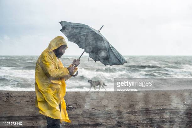 stormy beach - storm stock pictures, royalty-free photos & images