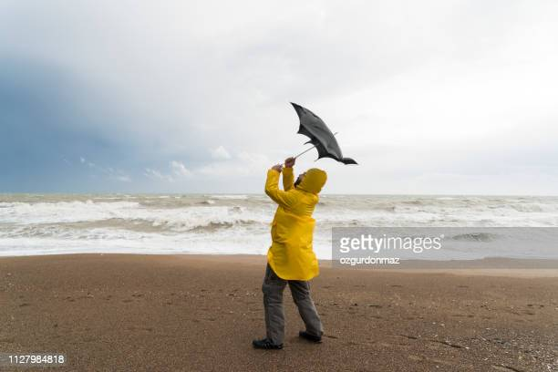 stormy beach - wind stock pictures, royalty-free photos & images
