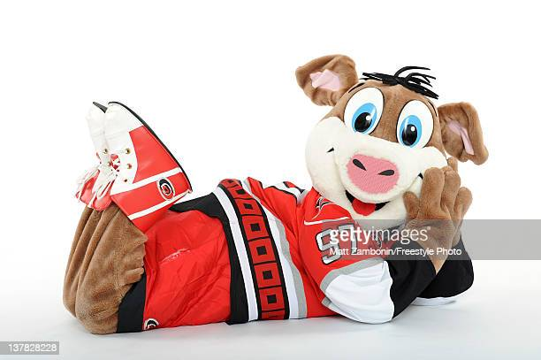 Stormy mascot for the Carolina Hurricanes poses for a portrait during 2012 NHL AllStar Weekend at Ottawa Convention Centre on January 26 2012 in...