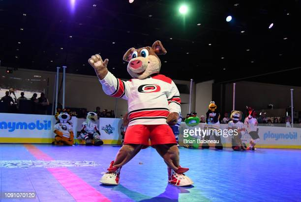Stormy of the Carolina Hurricanes at the 2019 NHL AllStar Fan Fair at the San Jose McEnery Convention Center on January 25 2019 in San Jose California