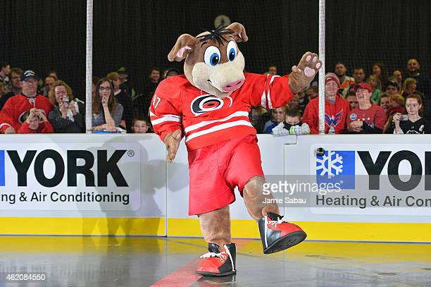 Stormy of the Carolina Hurricanes dances during the mascot showdown as part of the 2015 NHL AllStar Weekend at York Rink on January 24 2015 in...