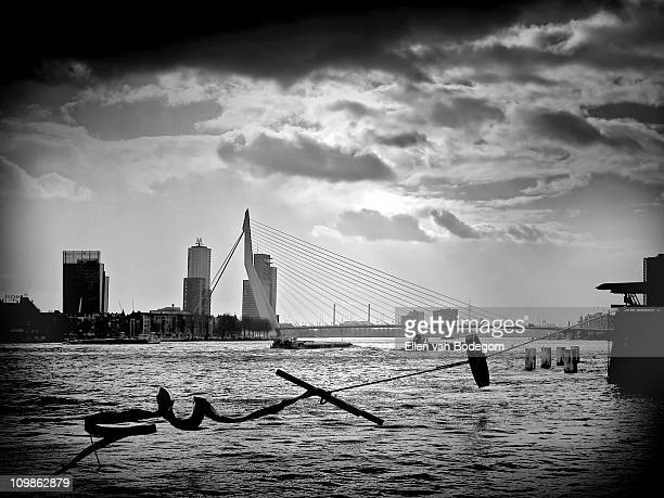 Stormy Rotterdam