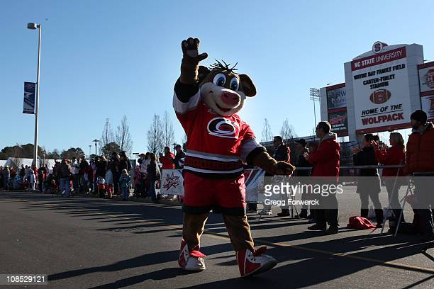 Stormy the Carolina Hurricanes mascot partakes in the AllStar 5K part of 2011 NHL AllStar Weekend at the Raleigh Convention Center on January 29 2011...