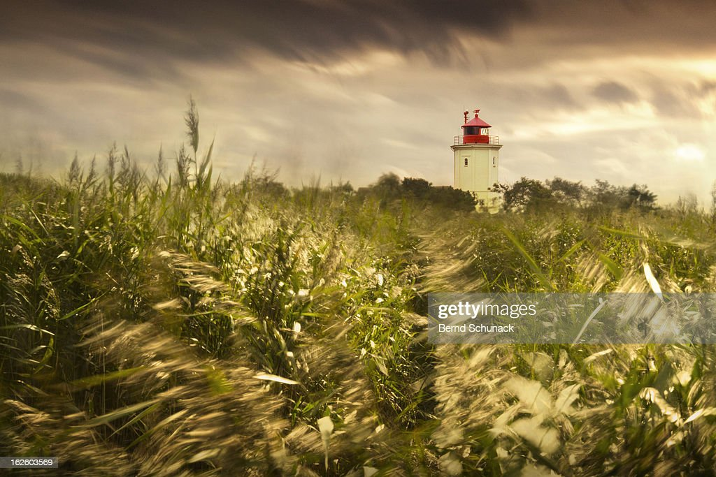 Stormy Weather : Stock-Foto