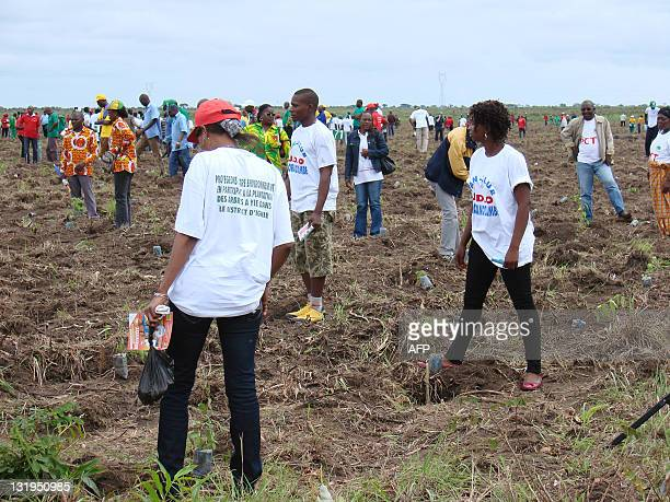 lancement symbolique de la plantation d'un million d'ha de forêt People take part in a tree planting project in Yie 60km north of Brazzaville on...