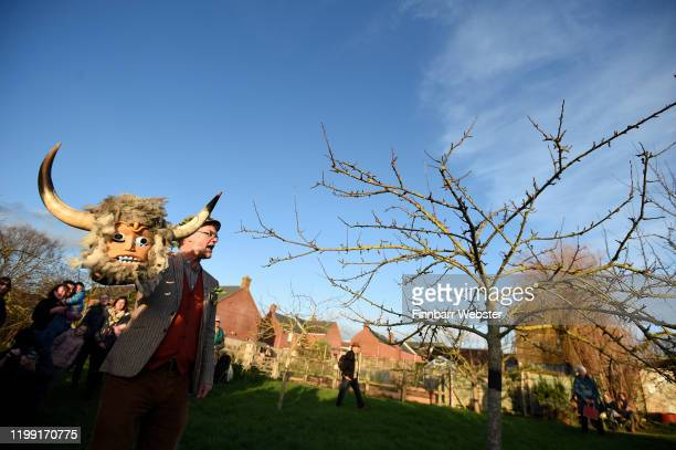 Storyteller Martin Maudsley leads the traditional Wassailing ceremony at Bridport Community Orchard on January 12 2020 in Bridport England The...