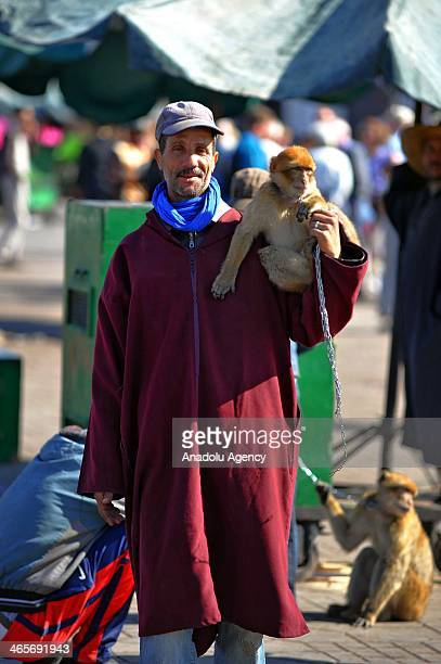 A storyteller with his monkey poses at Jemaa El Fna square in Marrakesh's medina quarter Morocco December 1 2013 Traditional oral storytelling is...