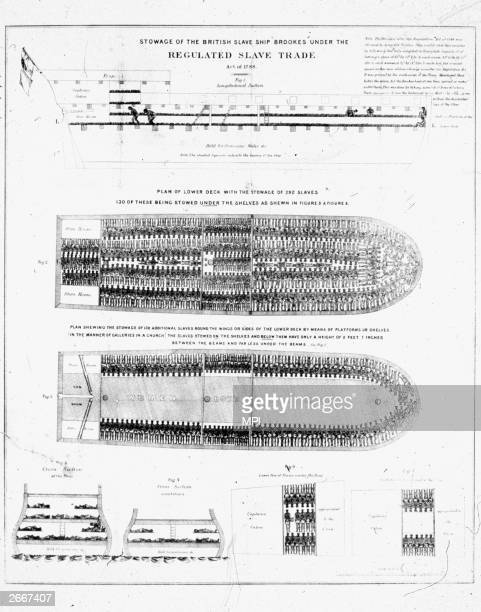Stowage of the slave ship Brookes with space for 292 slaves on the lower deck and another 130 crammed round the edges on shelves with a headroom of...
