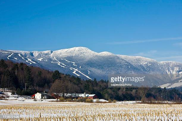 stowe - vermont stock pictures, royalty-free photos & images