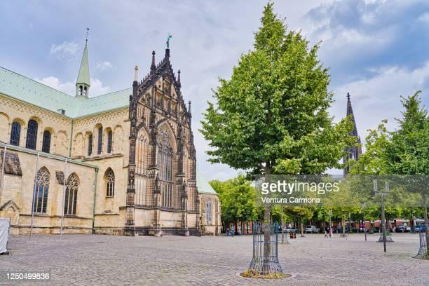 st.-paulus-dom in münster, germany - ミュンスター市 ストックフォトと画像