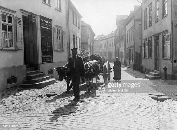 Straßenszene Bauer und Ochsengespann in einer engen Gasse 1904
