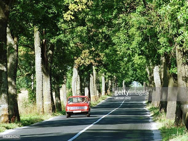 Straßenverkehr / Russische Förderation: Pkw fährt über eine Allee bei Kaliningrad. Straßenverkehr .