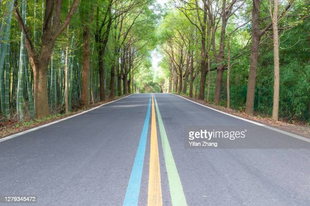 a straight rainbow-sign road through the forest - changzhou stock pictures, royalty-free photos & images