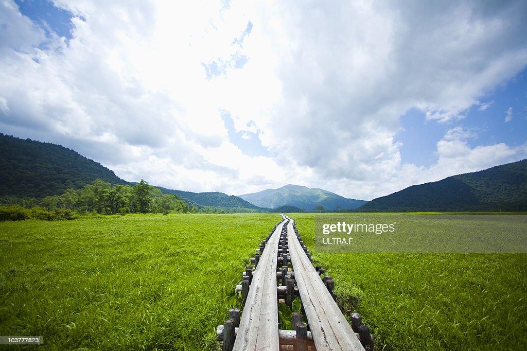 Straight road where Ozegahara : Stock Photo
