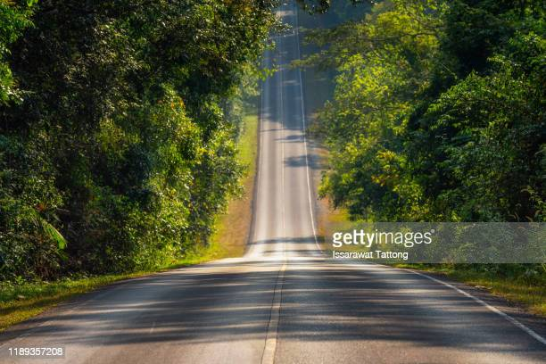 a straight steep road to entrance to khao yai national park, nakhon rachasrima,thailand. - steep stock pictures, royalty-free photos & images