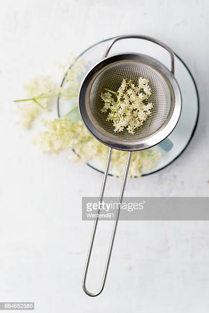 strainer with elderflowers on a cup - ニワトコ ストックフォトと画像