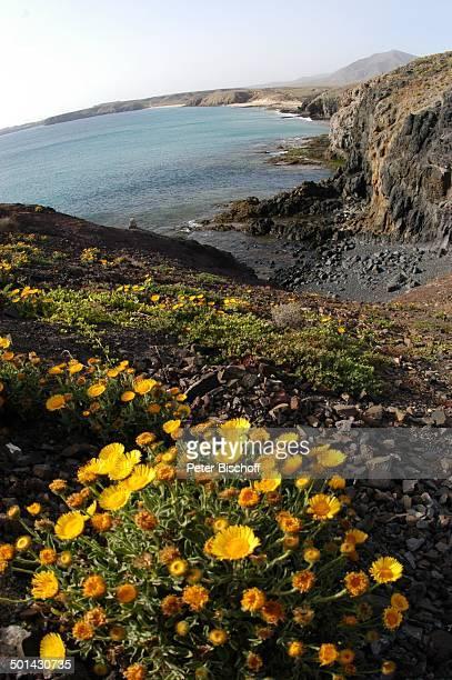 """Strand """"Charco de los ciclos"""", Yaiza, Kanaren-Insel Lanzarote, Spanien, Europa, Reise, BB, DIG; P.-Nr.: 382/2005, ;"""